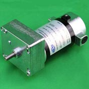DC 90V, Permanent Magnet Parallel Shaft Gearmotor RPM (r/m) 29