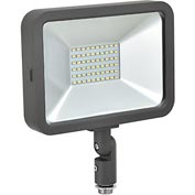 Global™ LED Flood Light, 30W, 2700 Lumens, 5000K, w/Knuckle Mount