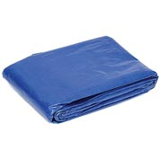 Global™ 6' x 8' Light Duty 2.9 oz. Tarp, Blue