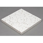"Baroque™ Mineral Fiber Ceiling Tile BET-197, Trim Edge, 48""L, PKG QTY 8"