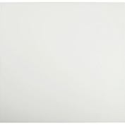 Genesis Smooth Pro PVC Ceiling Tile 740-00, Waterproof & Washable, 2'L X 2'W, White