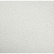 Genesis Printed Pro PVC Ceiling Tile 741-00, Waterproof & Washable, 2'L X 2'W - 12/Case