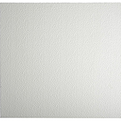 Genesis Stucco Pro Ceiling Panel 760-00, Waterproof & Washable, 2'L X 2'W, White