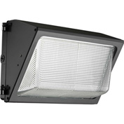 Lithonia TWR1 LED 3 50K MVOLT M2 LED Wallpack, 59W, 5000K, 4963 Lumens