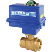 "BI-TORQ 1"" 2-Pc Brass NPT Ball Valve W/NEMA 4 115VAC/4-20mA Positioner"