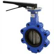 """5"""" Lug Style Butterfly Valve W/ Viton Seals; Includes 10 Position Handle"""