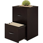 Ameriwood 2-Drawer Verticle File Cabineted Black Forest