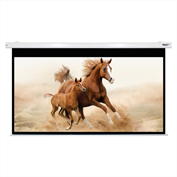 "HamiltonBuhl Electric Projector Screen - 120"" Diagonal - HDTV Format - White Frame"