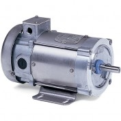 Baldor Electric Motors CDPSWD3410, .25HP, 1750RPM, DC, 56C, 3413P, TEFC, F1
