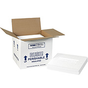 "Insulated Shipping Kit 10-1/2"" x 8-1/4"" x 9-1/4"" 200lb. Test/EPS Foam 2 Pack"