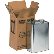 "One - 1 Gallon F-Style Haz Mat Boxes, 6-3/4"" x 4-5/16"" x 10-3/8"", 20/Pack"