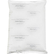 "Moisture Safe Cold Packs 10"" x 6"" x 1-1/2"" 32 oz. 24 Pack"