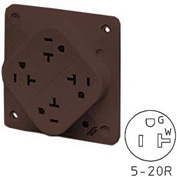 Bryant 21254B QUADPLEX®Receptacle / 20A / 125V / Brown
