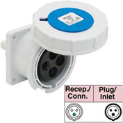 Bryant 316R6W Receptacle, 2 Pole, 3 Wire, 16A, 200-250V AC, Blue