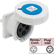 Bryant 320R6W Receptacle, 2 Pole, 3 Wire, 20A, 250V AC, Blue