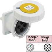 Bryant 330R4W Receptacle, 2 Pole, 3 Wire, 30A, 125V AC, Yellow