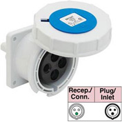 Bryant 330R6W Receptacle, 2 Pole, 3 Wire, 30A, 250V AC, Blue