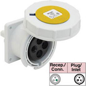 Bryant 360R4W Receptacle, 2 Pole, 3 Wire, 60A, 125V AC, Yellow