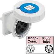 Bryant 360R6W Receptacle, 2 Pole, 3 Wire, 60A, 250V AC, Blue