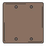 Bryant NPJ23 Box Mounted Blank Plate, 2-Gang, Mid-Size, Brown Nylon