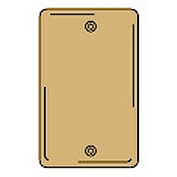 Bryant SBP13 Box Mounted Blank Plate, 1-Gang, Standard, Brass Plated