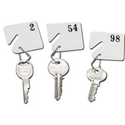 Sandusky Buddy 0032 - Plastic Key Tags Numbers 31 to 60 - White