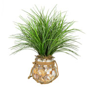 Creative Displays Grass in Seashell Filled Vase w/ Rope Accent