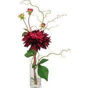 Creative Displays Burgundy Garden Dahlia In Square Glass Vase
