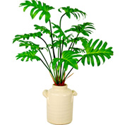 Creative Displays Philodendron In Cream Ceramic Pot