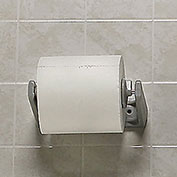 Palmer Fixture Mounted Single Toilet Tissue Dispenser - R401U