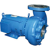 Barnes 104983, 2SEV1092L Sewage Pump - 200/240V - 7.9/7.5 Amps - 1 HP - Cast Iron