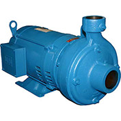 Burks 26CW00, 320GA5-1-1/4 Centrifugal End Suction - Three Phase - 2 HP - 80 Cap. Gal.