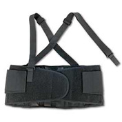 Ergodyne® ProFlex® 100 Economy Back Support, Black, Large