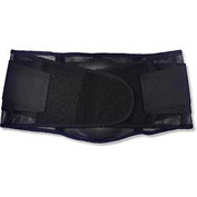 Ergodyne® ProFlex® 1051 Mesh Back Support, Black, Small