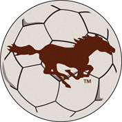 Fan Mats Southwest Minnesota State University Soccer Ball - 14085