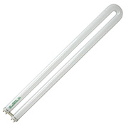 GE 72118 Fluorescent Bulb T-8 Medium Bi-Pin, 2440 Lumens, 82 CRI, 31W - Pkg Qty 15