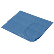 25' x 25' Light Duty 2.9 oz. Tarp, Blue - B25x25