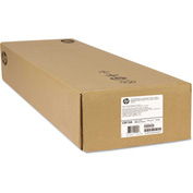 """HP Durable Banner Tyvek C0F13A, 42"""" x 75', White, 2/Pack"""