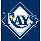 Tampa Bay Devil Rays 8'L Pool Table Cloth