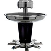 "Sanispray® Washfountain, Semi-Circular, 54"" W, 39"" H, 4-User,Indiv.Foot Operated,Liq. Soap"