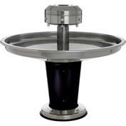 "Sanispray® Washfountain, Semi-Circular, 39"" W, 3-User, 39"" H, Electron. Touch Button"