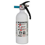 Automobile Fire Dry Chemical Extinguishers, KIDDE 21006287MTL