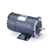 Leeson Motors DC Motor-1/2HP, 48V, 1800RPM, TEFC, Rigid C