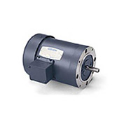 Leeson 101966.00, Standard Eff., 0.25 HP, 1725 RPM, 208-230/460V, 48CZ, TENV, C-Face Footless