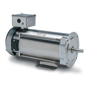 Leeson Motors Washdown DC Motor-1/3HP, 180V, 1750RPM, TENV, Rigid C