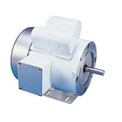 Leeson Motors Motor Washdown Motor-1/3HP, 115/208-230V, 3450RPM, TEFC, RIGID C, 1.15 SF, 65 Eff.