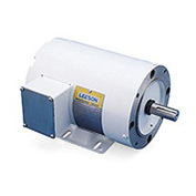 Leeson Motors Motor Washdown Motor-2HP, 208-230/460V, 3450RPM, TENV, RIGID, 1.15 SF, 84 Eff