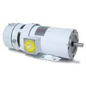 Leeson Motors Motor Washdown Motor-1/3HP, 208-230/460V, 1725RPM, TENV, RIGID C, 1.15 SF, 72 Eff.