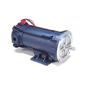 Leeson Motors Explosion Proof DC Motor-.75HP, 180V, 1750RPM, TENV, Rigid C