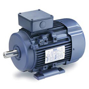 Leeson Motors Motor IEC Metric Motor-1.0HP, 230/460V, 3390/2760RPM, IP55, B3, 1.15 SF, 75.5 Eff.